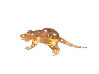 Rat céleste miniature