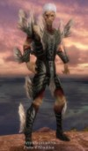 Armure primitive pour nécromant (Homme).jpg