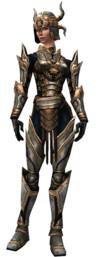 Armure de Lancier d'élite pour guerrier (Femme).jpg