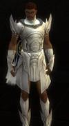 Armure d'Asura pour parangon (Homme).jpg