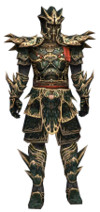 Armure de Luxon d'élite pour guerrier (Homme).jpg