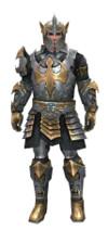 Armure de templier d'élite pour guerrier (Homme).jpg