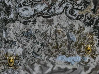 Carte détaillée - Passage de Borlis (Mission en mode coopératif)