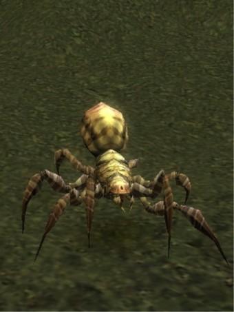 Carlotta l'araignée
