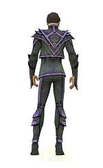 Armure de Kryte pour élémentaliste (Homme) - Violet Dos.jpg