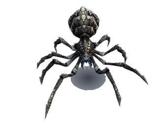Araignée des cavernes miniature