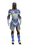 Armure élonienne pour parangon (Homme).jpg