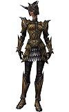 Armure de wiverne pour guerrier (Femme).jpg