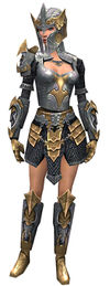 Armure de templier d'élite pour guerrier (Femme).jpg