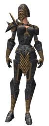 Armure de plates d'élite pour guerrier (Femme).jpg