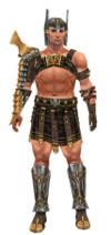 Armure de gladiateur d'élite pour guerrier (Homme).jpg