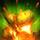 Flèches de feu