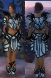 Armure primitive pour parangon (Femme).jpg